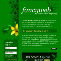 Fancy Web